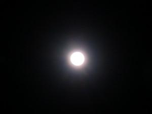 Cimg2838
