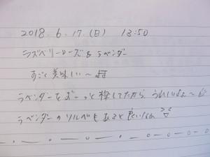 Cimg2250